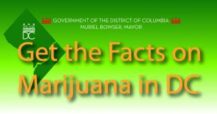 Get the Facts on Marijuana in DC banner