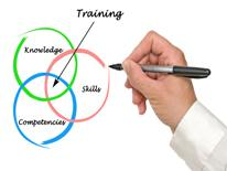 "Hand connecting circles of the words skills, knowledge and competencies and knowledge to intersect the word ""training."""